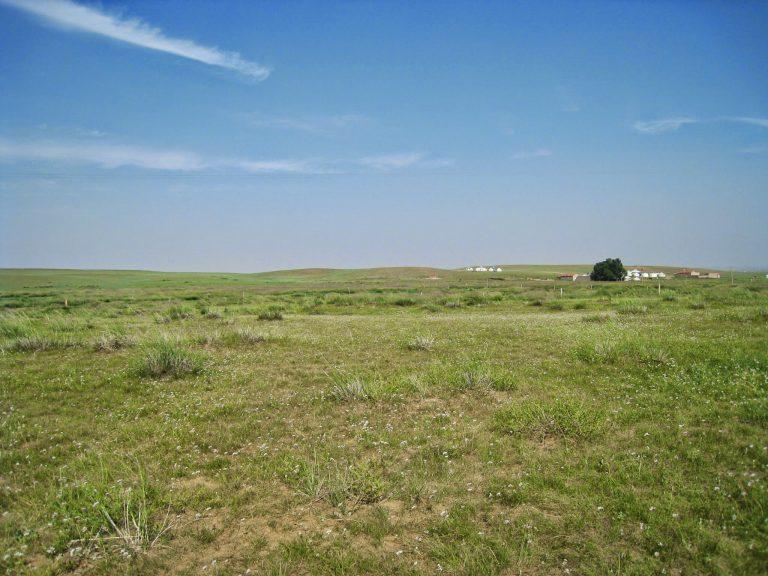 [內蒙] 自由狂奔在大草原上,體驗策馬奔馳