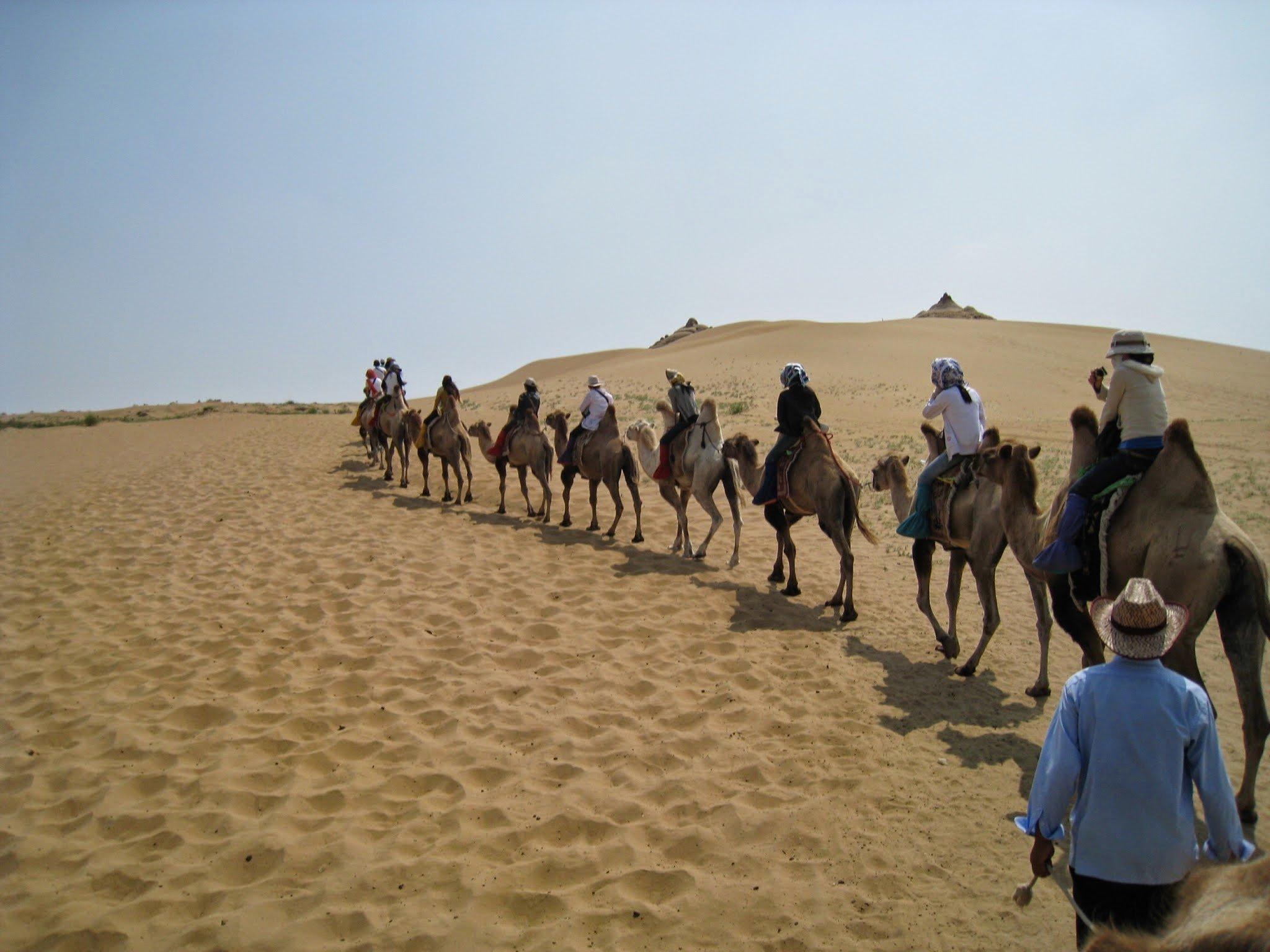 [內蒙] 響沙灣:感受熱情的庫布其沙漠